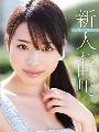新人NO.1STYLE 正統派美少女の系譜 本田岬パッケージ画像